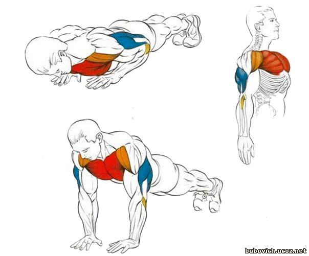 Как накачать грудные мышцы в домашних условиях за неделю девушке